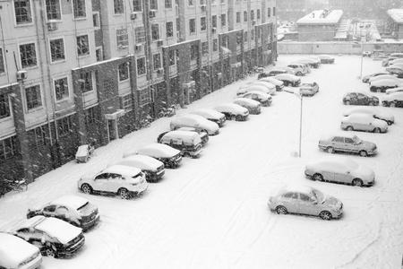 predicament: cars in the snow, closeup of photo