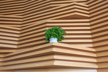 Plank decorative texture and green plants