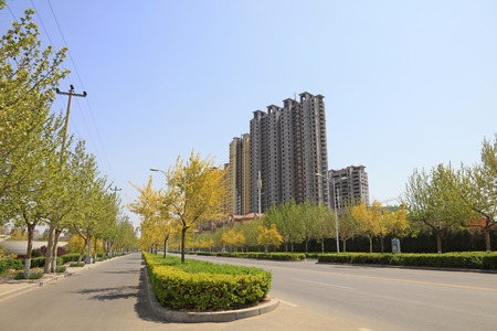 High-rise buildings and road greening