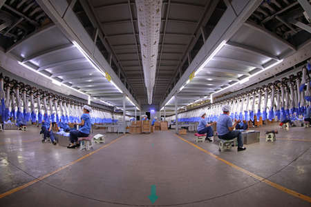 Luannan County-May 10, 2019: Workers are busy on the nitrile-butadiene glove production line in the factory, Luannan County, Hebei Province, China.