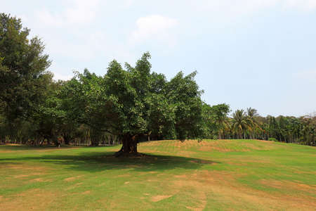 Tropical Botanical Garden, Sanya, China
