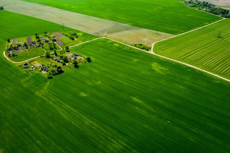 top view of a sown green field and a small village in Belarus. Agricultural fields in the village.Spring sowing in a small village.