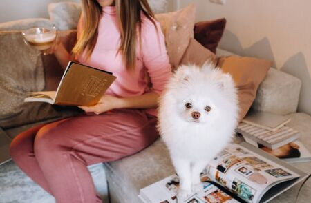 a girl in pajamas at home reads a book with her dog Spitzer, the Dog and its owner are resting on the sofa and reading a book.Household chores. Archivio Fotografico