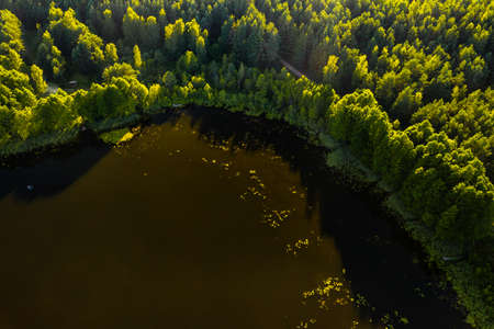 Top view of the lake Bolta in the forest in the Braslav lakes National Park, the most beautiful places in Belarus. An island in the lake.