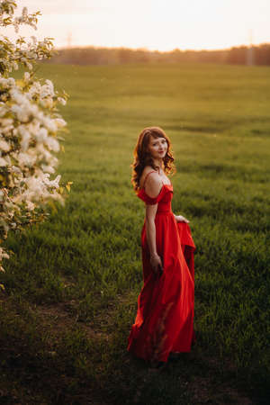 a beautiful girl in spring in a red dress with red lips stands next to a large white flowering tree. At sunset.