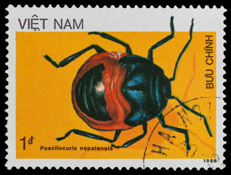 VIETNAM - CIRCA 1986: A stamp printed in Vietnam shows beetle Poecilocoris nepalensis, circa 1986