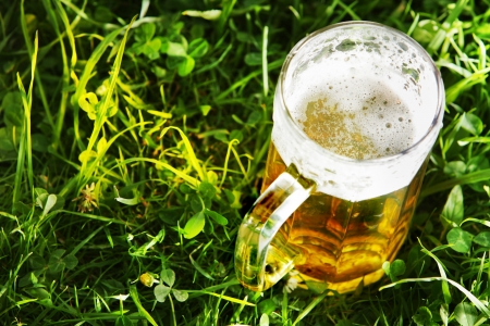 Mug of beer in green grass with copy space