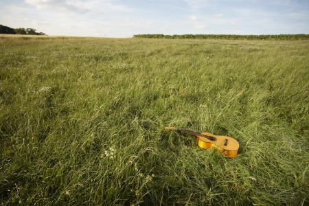 Acoustic wooden guitar lying by itself in a grassy field in a country music concept