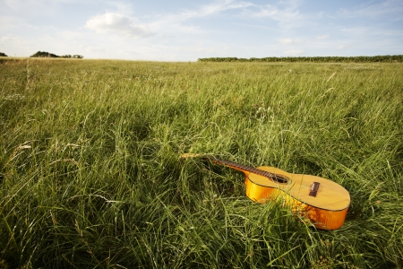 Wooden acoustic guitar lying in the foreground in a green grassy field with copyspace