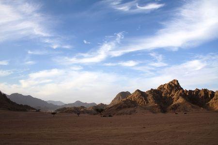 an evening shadow on the hot desert
