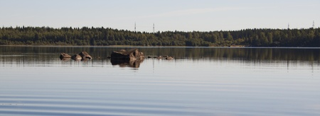 a rocks sticking out of the water