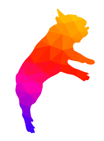 Silhouette of a French bulldog, colorful low polygonal illustration