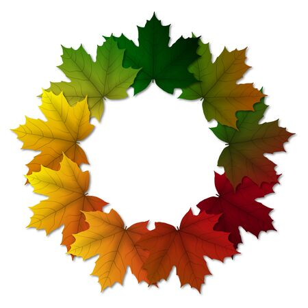 Colorful maple leaves in circle