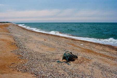seacoast: Seacoast before the storm