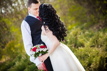 gently: groom gently embraces the bride Kiss Park
