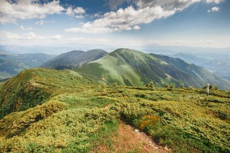 green ridge: mountain ridge covered with green grass tourism