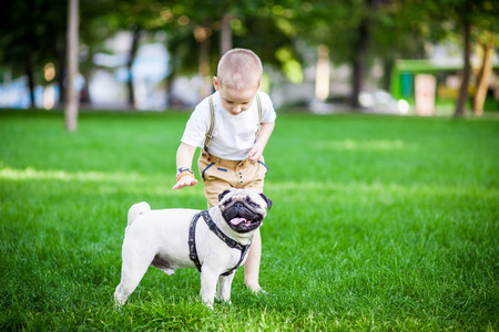 natural backgrounds: a boy and a pug in park Stock Photo