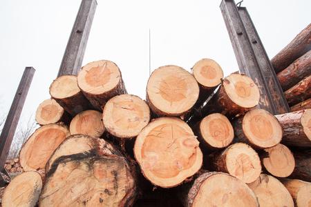 lumber industry: product wood lumber industry preparation