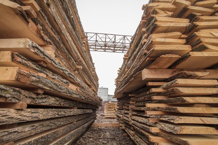 timber industry: wood timber industry lumber plank Stock Photo