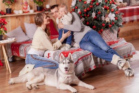 fireplace family: Happy family and a dog Siberian Husky near the fireplace around the Christmas tree Stock Photo