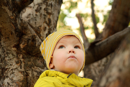 dreaminess: Portrait of a girl on a tree
