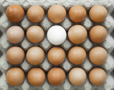Group of ordered, identical chicken eggs where there is one different. This shows the uniqueness of individual contrasting with the mass