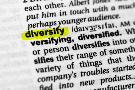 Highlighted word diversify concept and meaning.