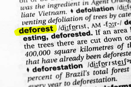Highlighted word deforest concept and meaning.