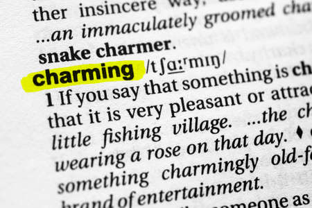 Highlighted word charming concept and meaning.