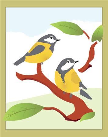 titmouse: Bird Illustration