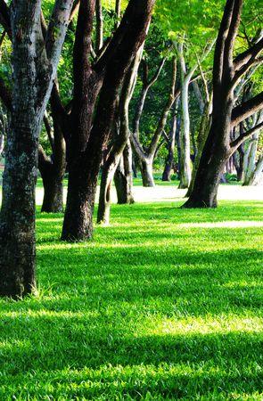 stuartkey: park