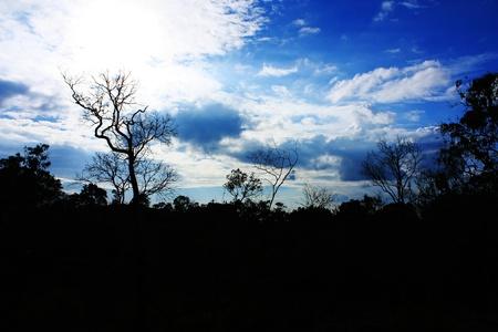 Silhouette view of beautiful Image at khao ko,Phetchabun,Thailand photo