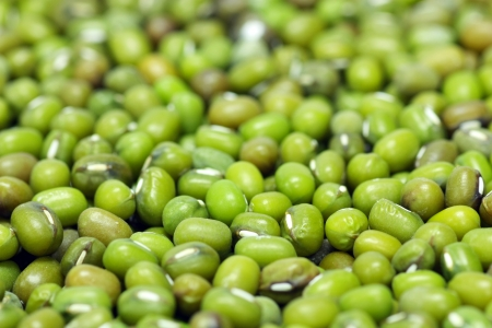 Mung beans photo