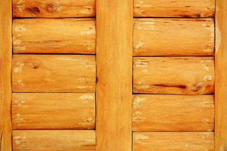quercus robur: wooden wall