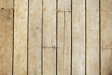 quercus robur: old grunge wooden wall used as background