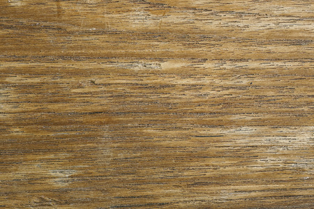 quercus robur: old, grunge wooden wall used as background