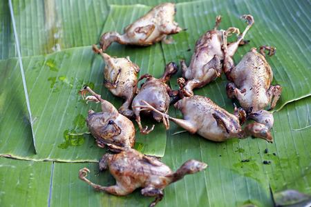 kuropatwa: Pieczone mięso kuropatwy na otwartym fireRoasted przepiórki na kracie