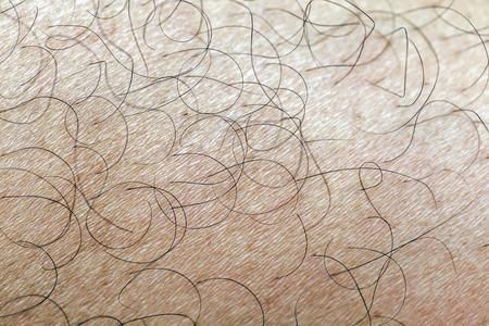 Mans hairy leg closeup