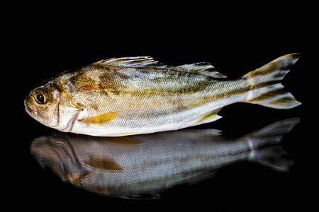 Marine fish contain nutrients that are essential to the body and can be eaten at any age because it is easily digested and low in fat.