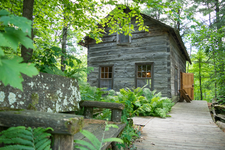 Old cabin set in the woods along a path. Banco de Imagens