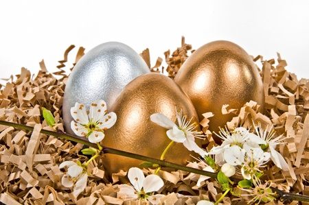 Golden and silver eggs in the nest. photo