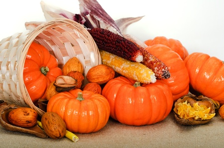 Close up composition of pumpkins, nuts and corns on the table. photo