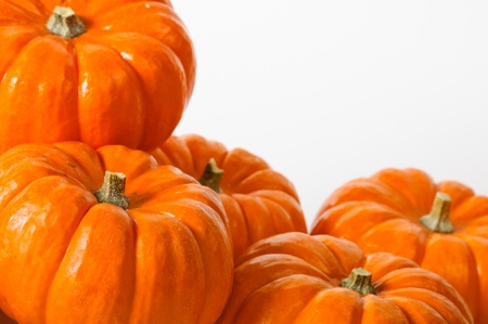 Close up composition of pumpkins on a white background. photo