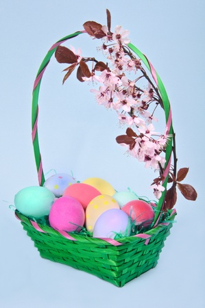 Easter colored eggs in the basket on the blue background