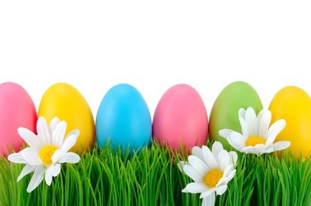 pascuas navide�as: Pascua huevos de color sobre la hierba verde