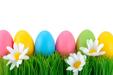 Easter colored eggs on the green grass   Stockfoto