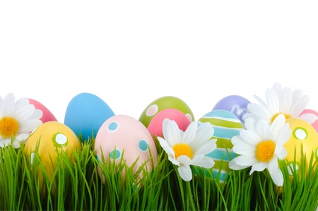 chamomile flower: Easter colored eggs on the green grass   Stock Photo
