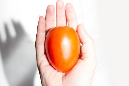 Tomato on hand. Stock Photo