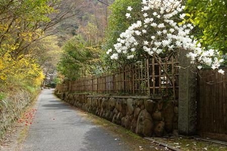 ryokan: The way to Arima Onsen tsutsumigataki Stock Photo