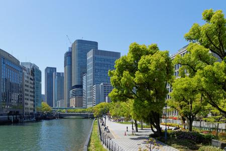 Nakanoshima Park widziana z mostu drzewa chinaberry
